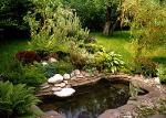 Уютный загородный отдых на природе
