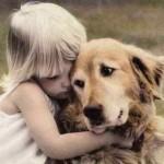 Животные являются частью нашей жизни