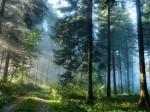 Заповедник – это природная коллекция планеты
