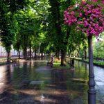 Самый красивый бульвар Одессы – Приморский