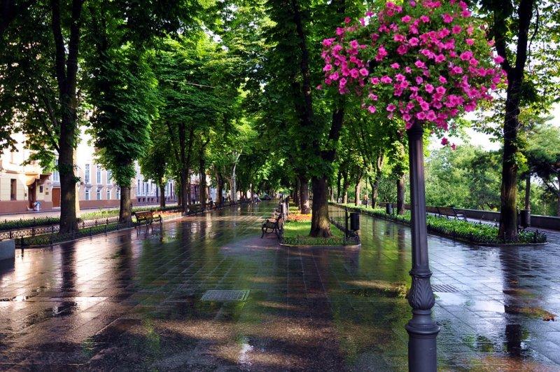Самый красивый бульвар Одессы - Приморский