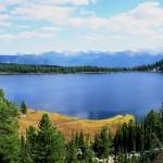Золотые горы Алтая или Алтайский заповедник