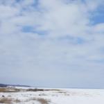 Зима в заповеднике Аскания-Нова и открытие нового сезона