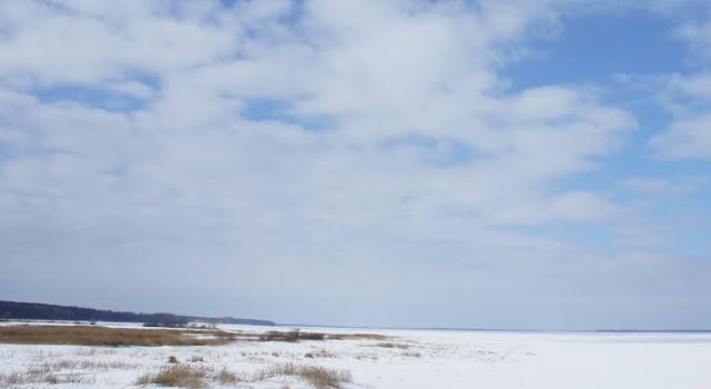 Аскания-Нова зимой