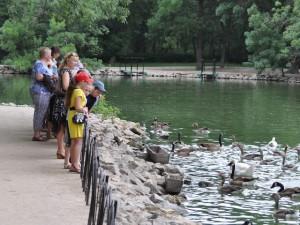 Экскурсии в Аскани-Нова