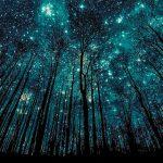 Холодная погода – лучшее время для просмотра – и фотографии – ночного неба